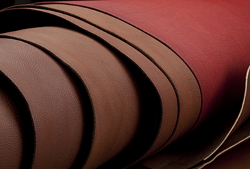 Génie Textile et Cuir (GTC)
